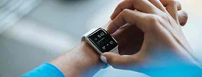 reloj y ritmo circadiano